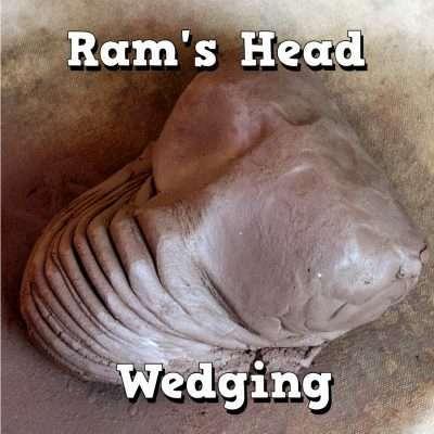 ram's head wedging